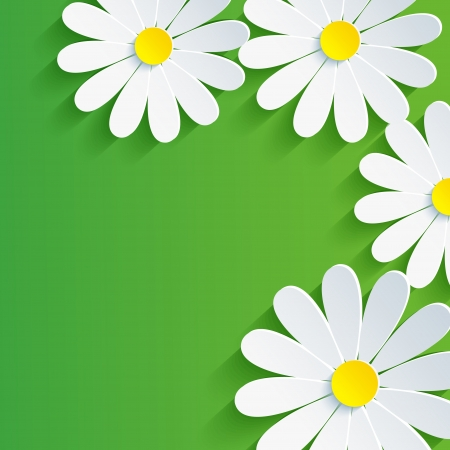 3d flower chamomile, spring abstract background  Vector floral background  Vector illustration Vector