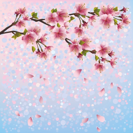 person falling: Colorful spring background with sakura blossom