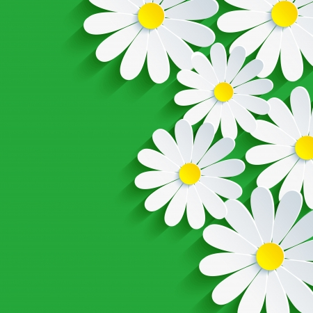 3d flower chamomile, spring background abstract   Illustration