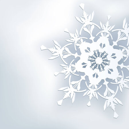 Stylish abstract background, 3d ornate snowflake  Winter gray background  Vector