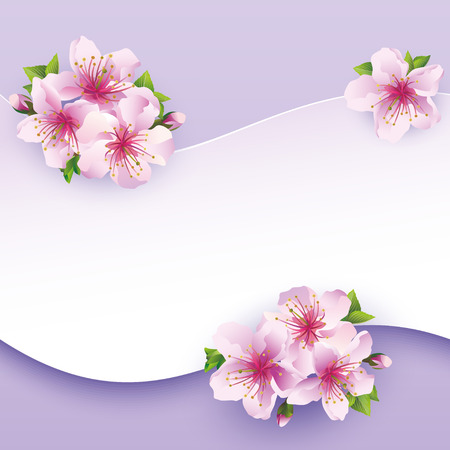 Floral background, greeting card with flower sakura  Greeting or invitation card  Stylish illustration Vector