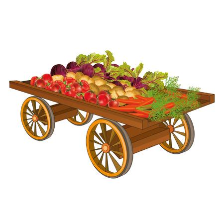 carretilla: Carro de madera con la cosecha de hortalizas - tomates, patatas, pimientos, remolachas, zanahorias, aisladas sobre fondo blanco Ilustración vectorial