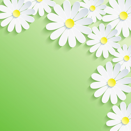 Stylish trendy background, white 3d flower chamomile  Abstract spring or summer green card  Vector floral background  Vector illustration