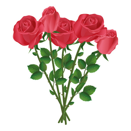 five petals: Celebration beautiful romantic bouquet of five red roses, isolated on white background  Vector illustration