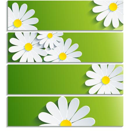 groen behang: Set van banners met 3d bloem kamille op een witte achtergrond Creative trendy groen behang met bloemen chamomiles Vector illustratie