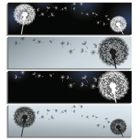 papier peint noir: Ensemble de banni�res horizontales �l�gantes noires et grises avec des pissenlits isol� sur fond blanc Belle branch� peint romantique Vector illustration Illustration