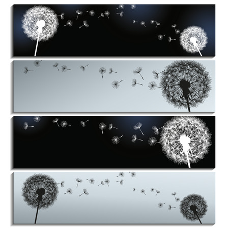Set of stylish horizontal banners black and grey with dandelions  isolated on white background  Beautiful trendy romantic wallpaper  Vector illustration Vettoriali