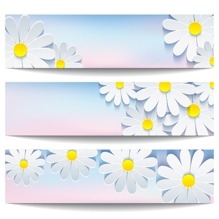 horizontal banner: Set of beautiful trendy banner blue-pink with 3d flower chamomile isolated on white background.  Illustration