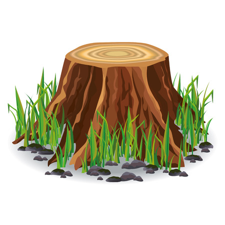 Realistic tree stump with fresh green grass and soil isolated on white Illustration