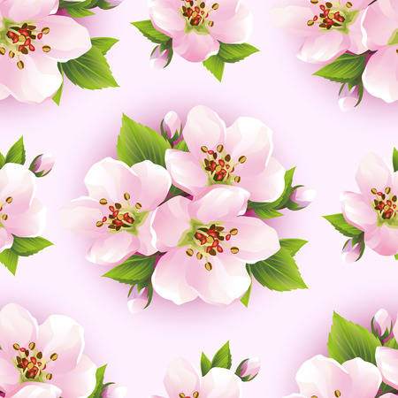 Beautiful background seamless pattern with pink sakura blossom - japanese cherry tree. Floral spring wallpaper. Vector illustration Vector