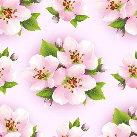 Branch Of White Blossoming Sakura Japanese Cherry Tree Beautiful