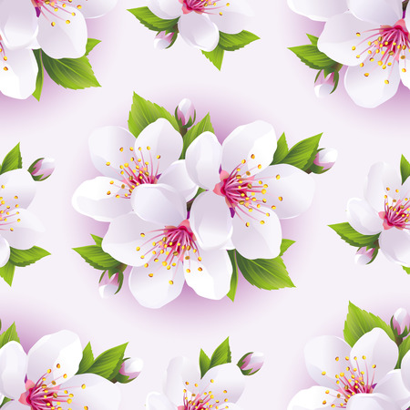 Beautiful light background seamless pattern with white sakura blossom - japanese cherry tree. Floral spring white - purple wallpaper. Vector illustration Vector