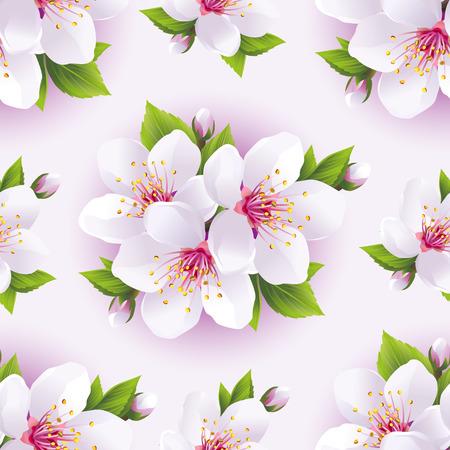 Fondo Claro Hermosa Sin Patrón, Con Rosa Flor De Sakura - Cerezo ...