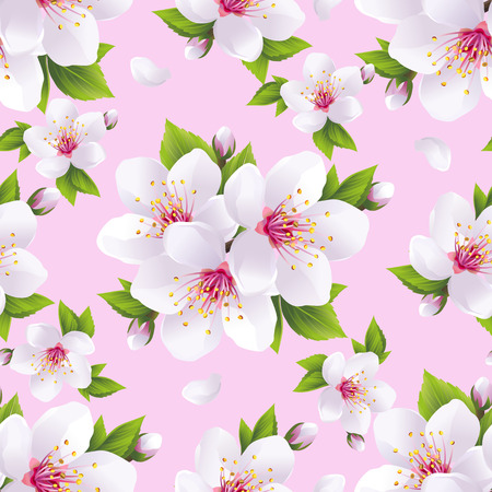 Beautiful light background seamless pattern with white sakura blossom - japanese cherry tree. Floral spring pink wallpaper. Vector illustration Vector