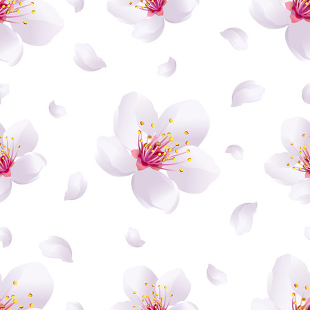 Beautiful light spring background seamless pattern with white sakura blossom - japanese cherry tree and flying petals. Floral romantic wallpaper. Vector illustration Vector