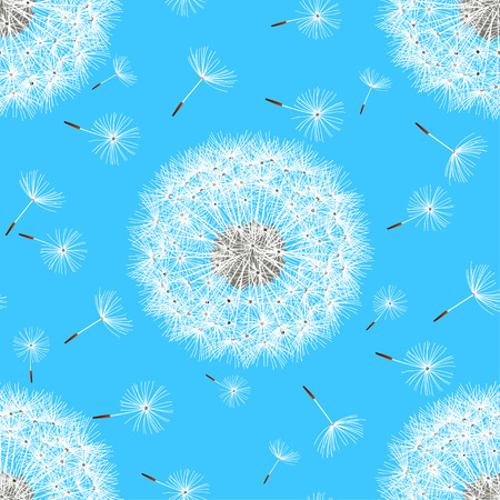 fluff: Stylish beautiful nature background seamless pattern with flowers dandelions and white flying fluff. Summer or spring seamless pattern with flowers. Trendy bright blue wallpaper. Vector illustration