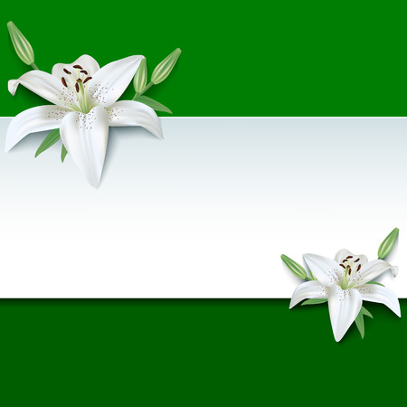 Festive rectangular frame with white summer 3d flowers lilies. Floral creative trendy green background Vettoriali