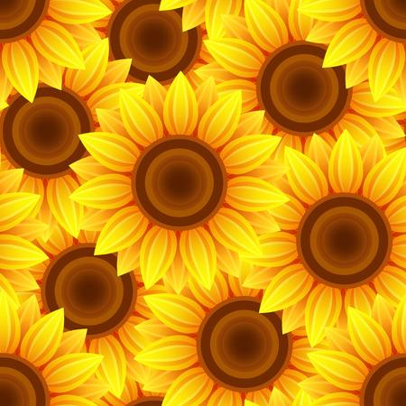 Sun flower: Schöne Natur Hintergrund nahtlose Muster gelb, orange mit Sonnenblumen. Floral helle nahtlose Muster mit Sommerblumen. Stilvolle romantische trendy. Vektor-Illustration