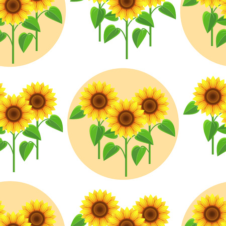 Sun flower: Schöne Natur Hintergrund nahtlose Muster weiß mit gelb - orange Sonnenblumen und Kreisen. Floral helle nahtlose Muster mit stilisierten Sommerblumen. Trendy romantische stilvollen Tapeten. Vektor-Illustration Illustration