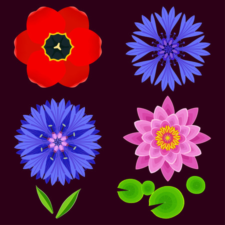 Set of different stylized lotus, cornflower, tulip and leaves. Collection of beautiful spring and summer flowers isolated on dark background. Elements of floral design, icons. Vector illustration