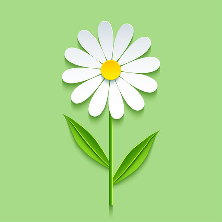 Beautiful trendy nature background with 3d chamomile cutting paper. Stylized summer flowers isolated over green. Stylish floral wallpaper. Floral design elements. Vector illustration