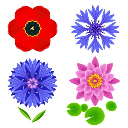 Set of different stylized lotus, cornflower, tulip and leaves. Collection of beautiful spring and summer flowers isolated on white background. Elements of floral design, icons. Vector illustration