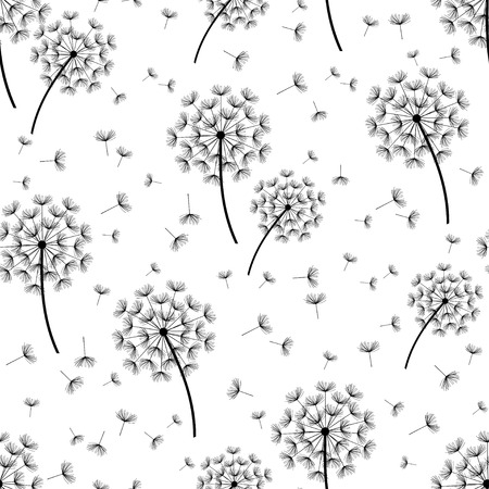 fluff: Beautiful nature background seamless pattern white and black with dandelion fluff. Floral seamless pattern with summer or spring flowers. Stylish trendy wallpaper. Vector illustration Illustration