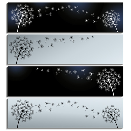 fluff: Set of horizontal black and grey banners with dandelions fluff isolated over white. Modern floral background with summer or spring flowers. Stylish trendy wallpaper. Vector illustration