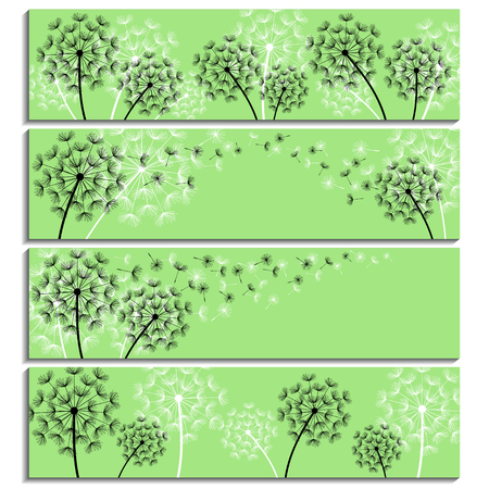 fluff: Set of horizontal green banners with black and white stylized dandelions and flying fluff. Modern floral background with summer or spring flowers. Stylish trendy wallpaper. Vector illustration