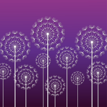 beauty of nature: Dark purple ornamental background with stylized white dandelions. Floral stylish trendy wallpaper with summer or spring flowers. Modern backdrop. Beauty of nature. Vector illustration