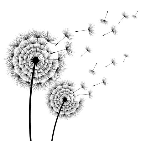 dos hermosas flores negras y estilizadas flores y pelusa del árbol oscuro en el fondo blanco. estilo de vida de la moda floral de moda o la moda de la primavera del sol del fondo del vector