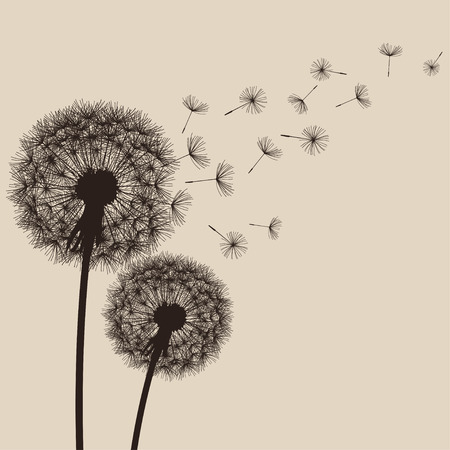 Two delicate brown dandelions silhouette with flying fluff on beige background. Floral stylish modern wallpaper with summer or spring flowers. Beautiful trendy nature backdrop. Vector illustration