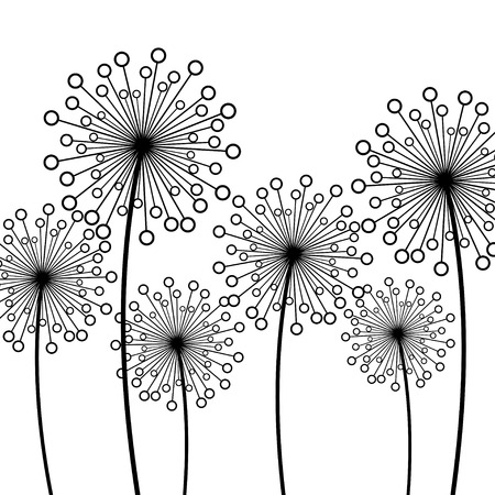 overblown: Abstract white background with black stylized decorative dandelions. Floral stylish trendy wallpaper with summer or spring flowers. Modern backdrop. Beauty of nature. Vector illustration