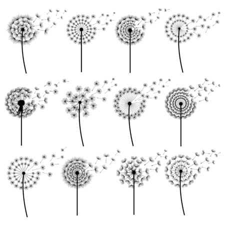Set of black dandelions blowing isolated on white background. Stock Illustratie