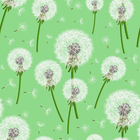 Hermoso patrón transparente verde brillante con soplado de diente de león realista. Fondo floral con flores de verano o primavera. Papel pintado de naturaleza de moda con estilo. Diseño gráfico. Ilustración vectorial