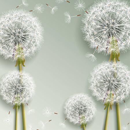 Bello fondo alla moda della natura con i denti di leone 3d che soffiano. Elegante carta da parati floreale elegante con fiori estivi o primaverili e lanugine volante. Graphic design. Illustrazione vettoriale