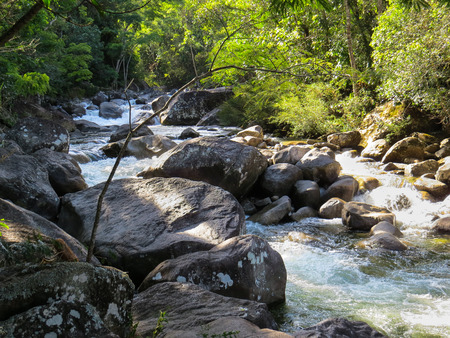 Small waterfall in creek with rocks, in the forest in sunny day. Banco de Imagens