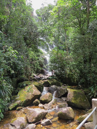 January 7, 2016, Itatiaia, Rio de Janeiro, Brazil, rapids in the middle of the forest in the Itatiaia National Park, on a sunny day.