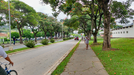 February 22, 2016, Viçosa, Minas Gerais, Brazil, a tree-lined avenue on the campus of the Federal University of Viçosa on a sunny day.