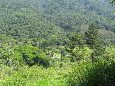 View of green valley with forest in the background, in sunny day.