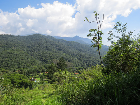 View of green valley with forest, mountains and sky in the background, in sunny day.