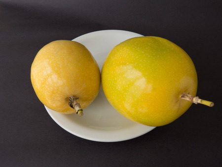 Two units of passion fruit on white plate, ripe, isolated on black background.