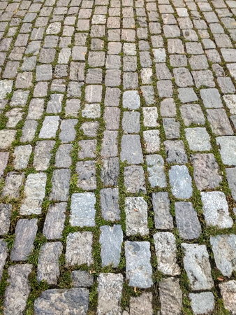Old street of rectangular granite stones in perspective, with weeds at the joints.
