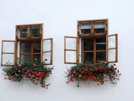 gothic window: two windows with flowers Stock Photo