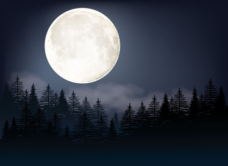 Full Moon vector Illustration. A night sky background with trees and moonlight.