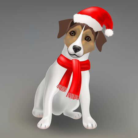 Dog Jack Russell Terrier in the red hat of Santa Claus and red scarf, Christmas vector illustration Иллюстрация