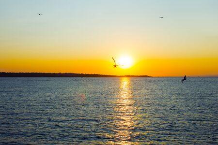 Colorful sea beach sunset. Sea in sunset nature landscape. Imagens