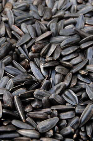 Sunflower seed in close up Stock Photo - 2066408