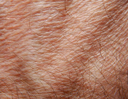 Human skin in close up Stock Photo - 2101923