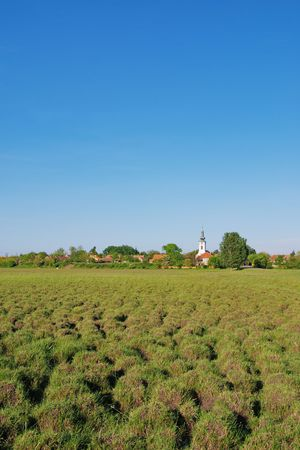 molehill: Mole hills,mound in meadow with green grass and village in central Europe